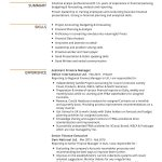 Assistant Finance Manager CV Template