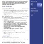 Business Consultant CV Template