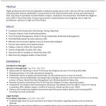 Compliance Manager CV Template
