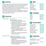Data Scientist CV Template and Writing Guide