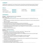 Loan Manager CV Template