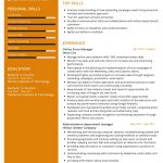 Online Store Manager CV Template