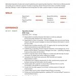 Operations Analyst CV Template