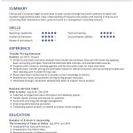 Transfer Pricing Consultant CV Template