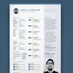 Best Creative Timeline Resume Template