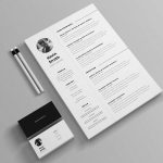 Minimal Resume Template Free File