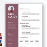 Best Free Resume Template Multi File Format