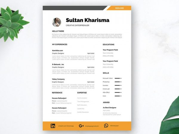 Professional Free CV Template