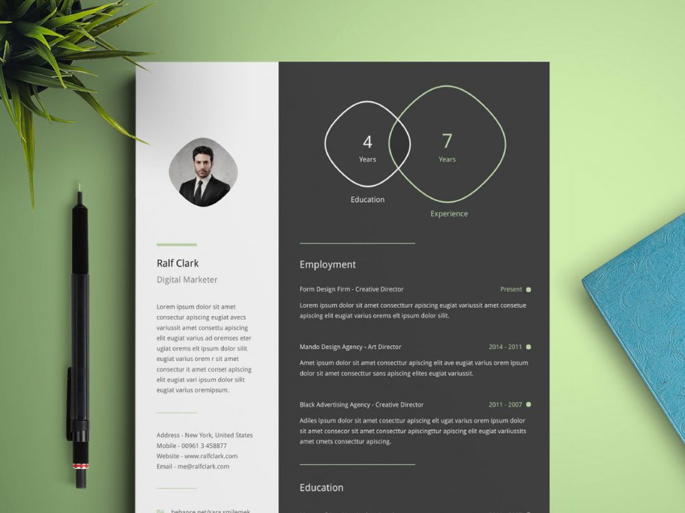 Simple Illustrator Infographic Resume Template