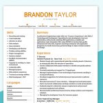 IT Director Resume Sample PDF