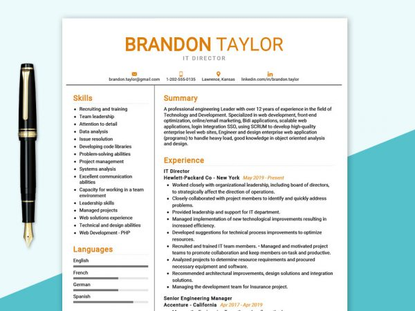 IT-Director-Resume-Sample