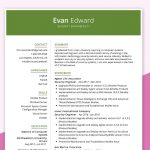 IT Security Engineer Resume Sample