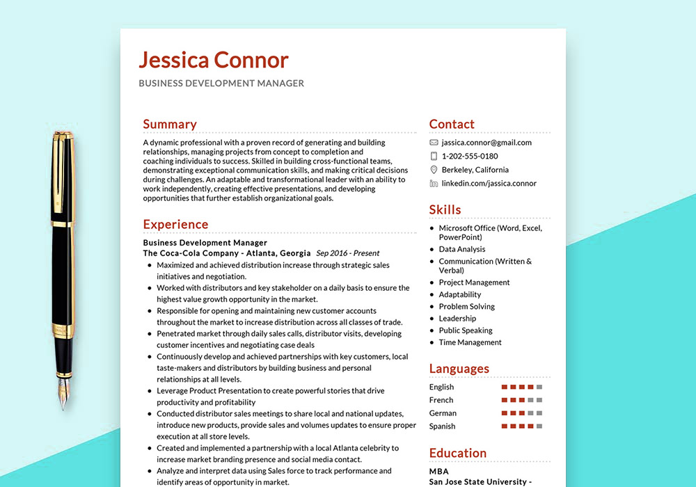 Business Development Manager Example