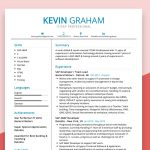 Professional SAP Resume Sample
