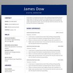 Best Infographic Resume Template AI