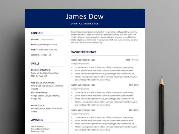 professional-resume-template-word